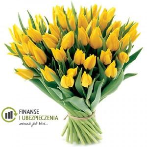 Bukiet 35 tulipanów żółtych_B093-600x600